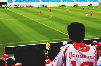 Un tifoso esulta durante una partita di calcio